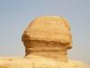 The Sfinx